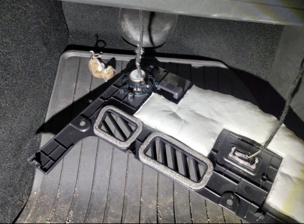 Мертвая крыса в электромобиле Tesla Сары Уильямс